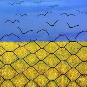 Ukr flag fence