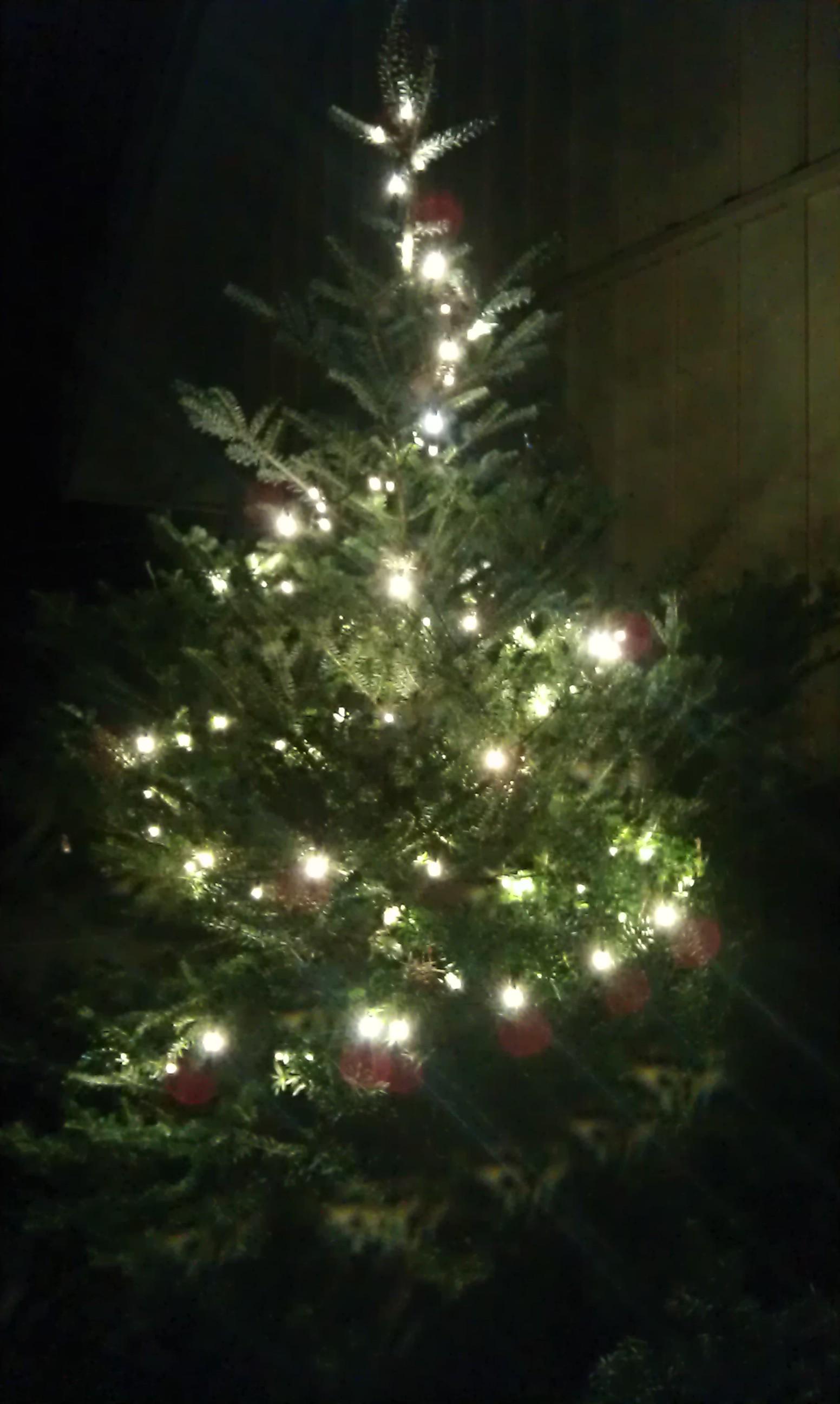 O Christmas Tree, O Christmas Tree | Marie Willermark